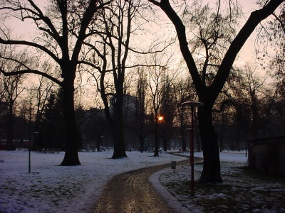 Winter im Volksgarten